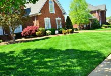 certified commercial landscape contractor